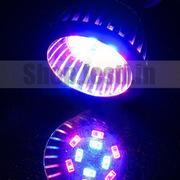 Светодиодные лампы - За ними будущее!